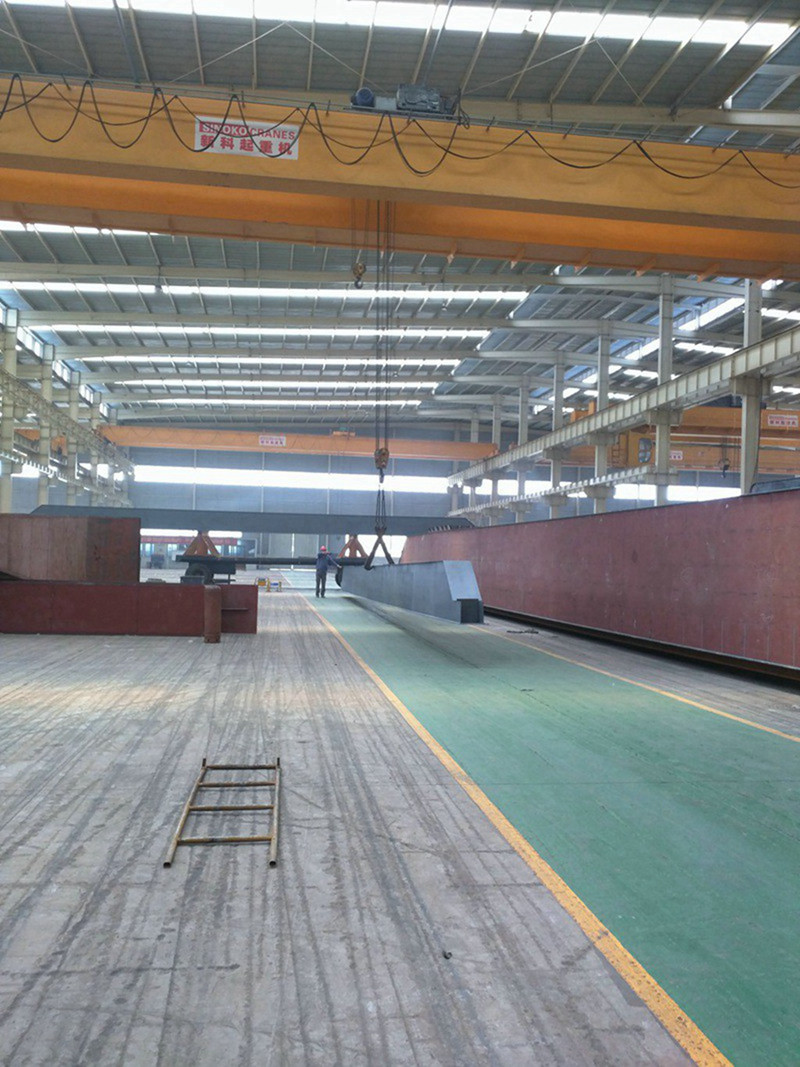 Steel Mill Used High Quality Double Girder Overhead Crane with Electric Hoist